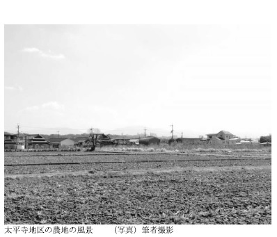 太平寺地区の農地の風景