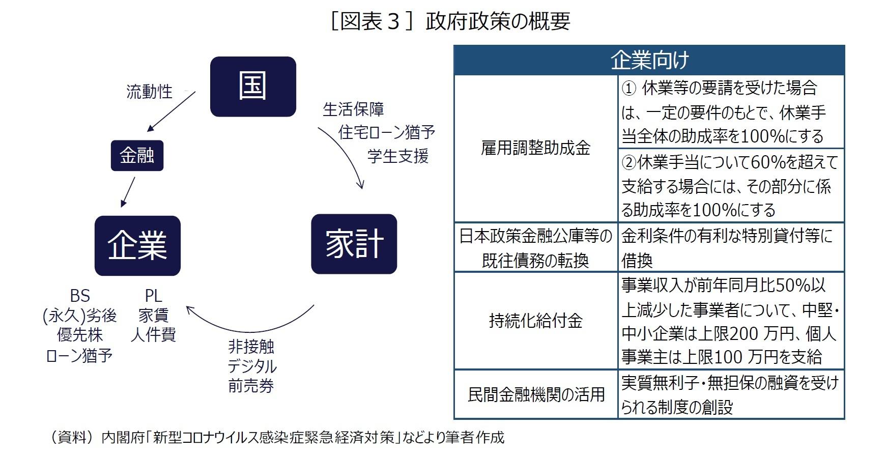 [図表3]政府政策の概要