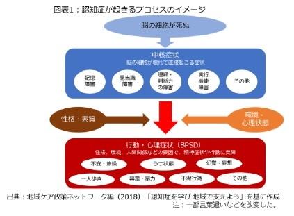 図表1:認知症が起きるプロセスのイメージ