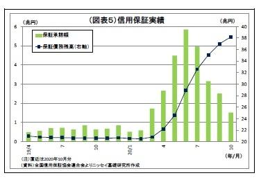 (図表5)信用保証実績