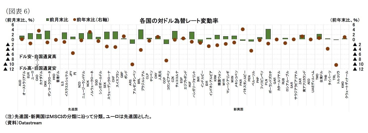 (図表6)各国の対ドル為替レート変動率