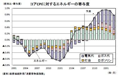 コアCPIに対するエネルギーの寄与度